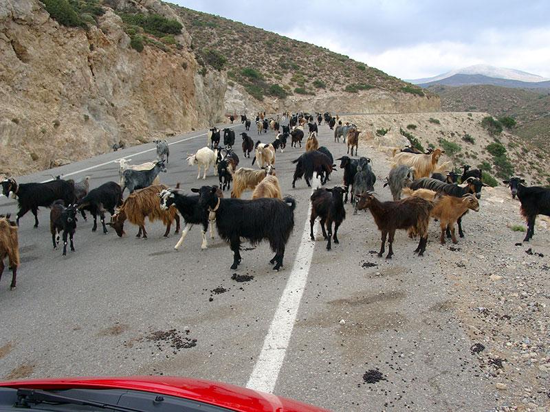 Unterwegs von Elafonisi nach Kissamos