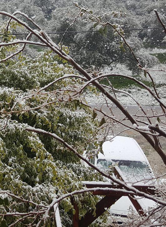 Leihwagen im Schnee