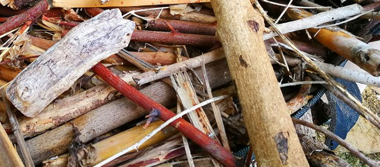 Holz fürs Heizen