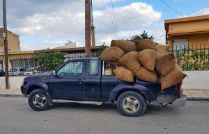 Pickup mit Oliven