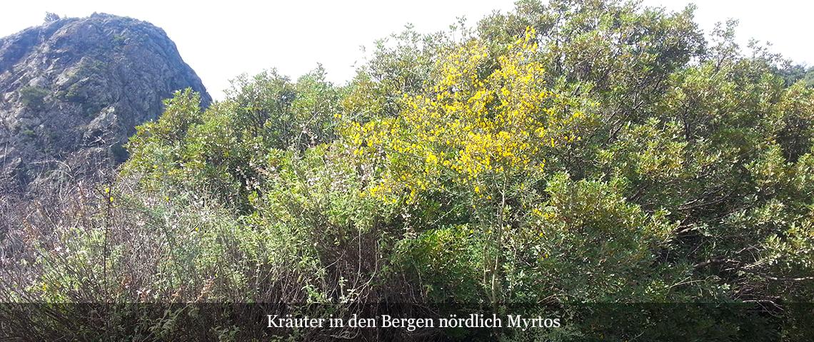 Slider Bergregion nörlich von Mirtos
