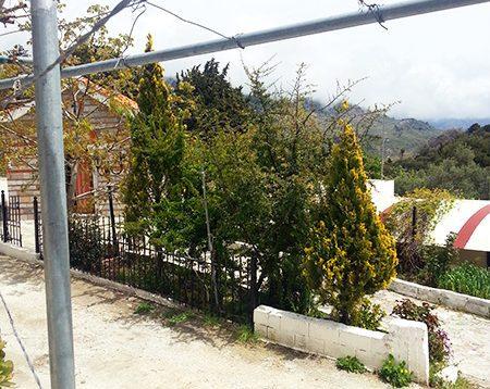 Selakano Taverne nördlich oberhalb von Mirtos