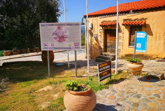 Oliven-Museum in Ano Vouves