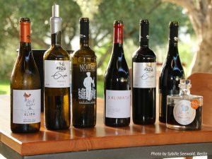 Weinverkostung bei Karavitakis in Pontikiana