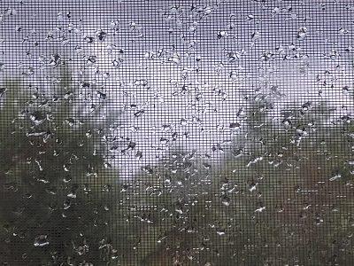 Wetter im Oktober 2020